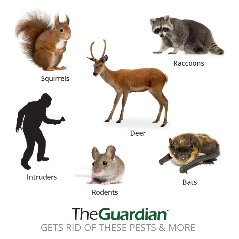 Goodlife - The Guardian™ 2 Pack - Double Your Coverage And Target More Pests - The Strongest Outdoor Pest Repellent