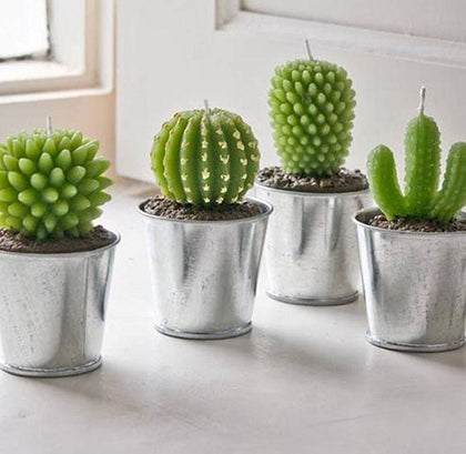 Little Cactus Tea Light Candles
