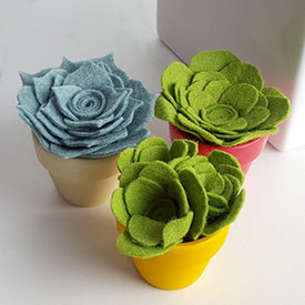 Felt succulents by mellsva on Etsy | The Magpie Files