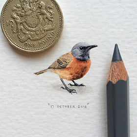 Tiny Paintings for Ants by Lorraine Loots