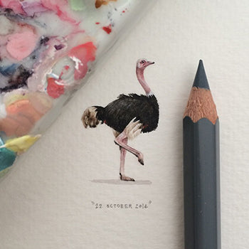 Ostrich 22 October 2014 Miniature by Lorraine Loots