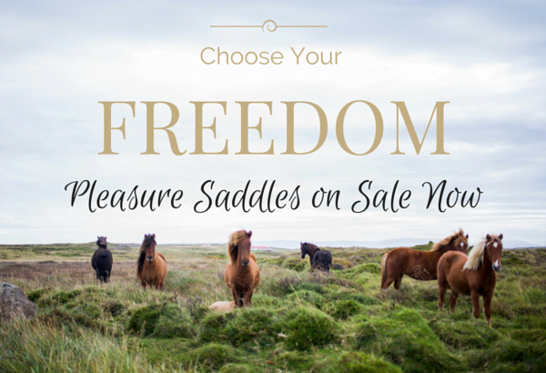 Shop pleasure saddles, Find your Freedom
