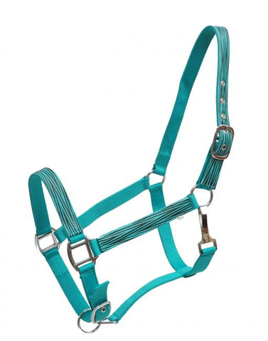 Teal Showman ® Full Size adjustable halter with zebra print