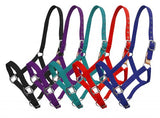 Teal Showman ® 3 ply nylon breakaway halter