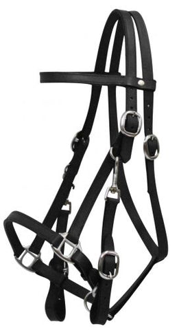 #5005: Leather halter bridle combination with 7' leather split reins.  Features 4 way adjustment.