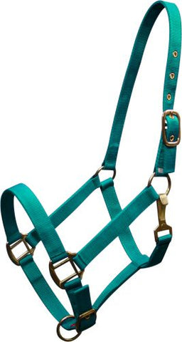 Fluorescent Orange Horse size Triple ply nylon halter with brass hardware