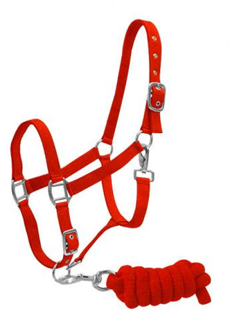 Red Full Size adjustable nylon halter with 7ft lead