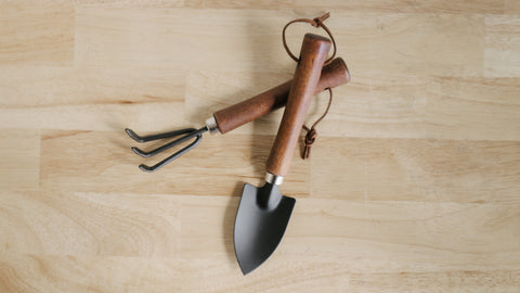 Trowel and Fork Garden Tool Set