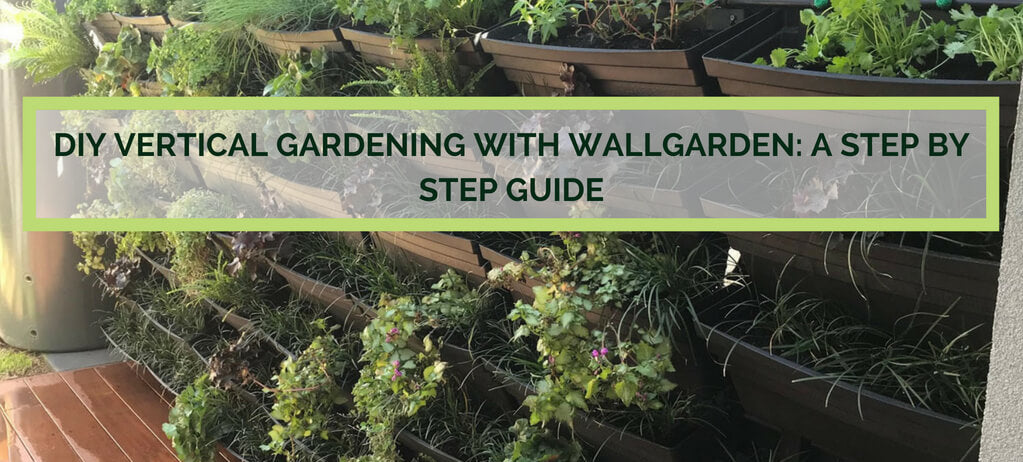 How To Build a Vertical Garden with Wallgarden: a step by step guide.