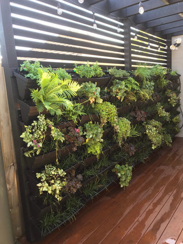wallgarden diy home made vertical garden green wall living wall planter kit