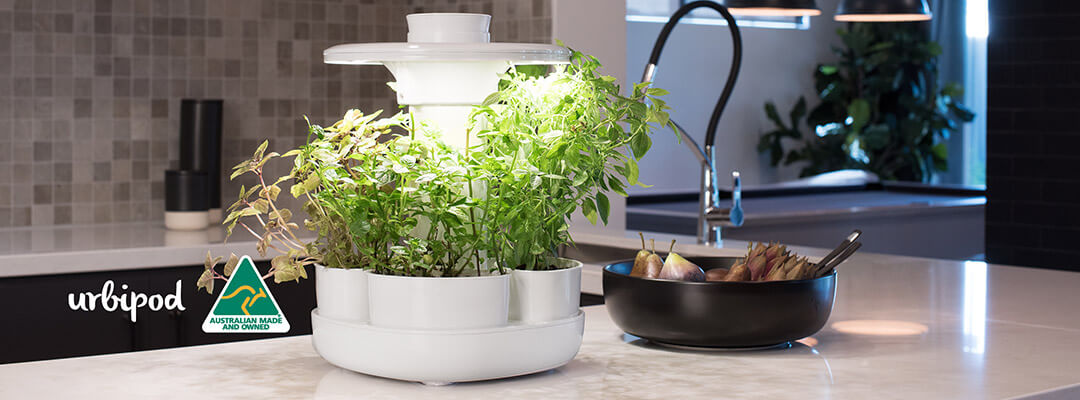 Urbipod Kitchen Herb Self Watering Planter with Full Spectrum LED Lighting