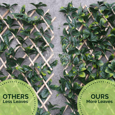 laurel leaf expandable trellis screen from vertical gardens direct