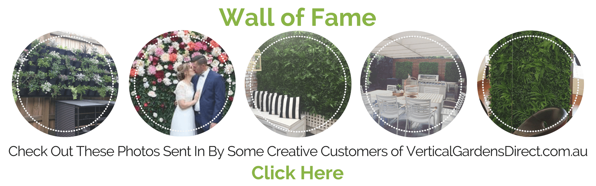 Browse Photos Of Our Customers Vertical Gardens, Green Walls, Artificial Hedges and More.