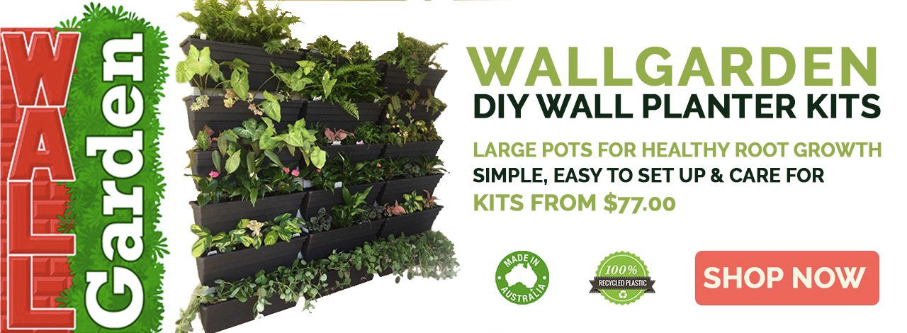 Wallgarden vertical planters for DIY vertical garden - Vertical Gardens Direct