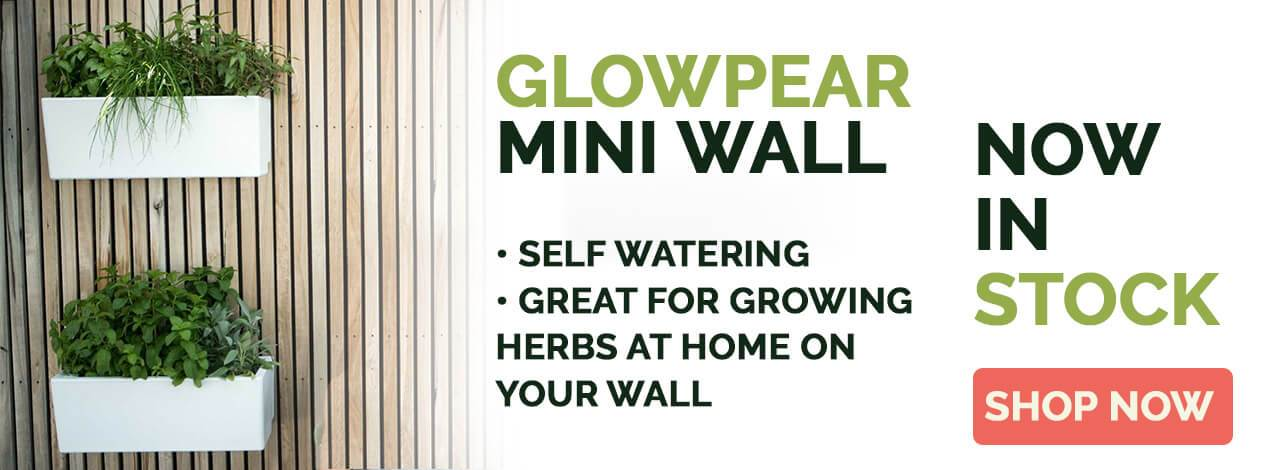 Glowpear Mini Wall Banner