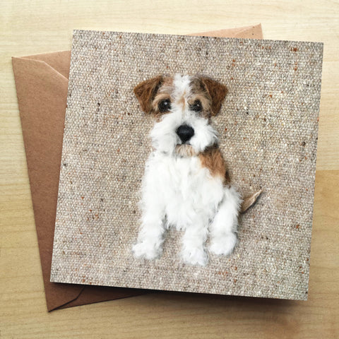 Rough Haired Jack Russel SA23G Greetings Card by Sharon Salt