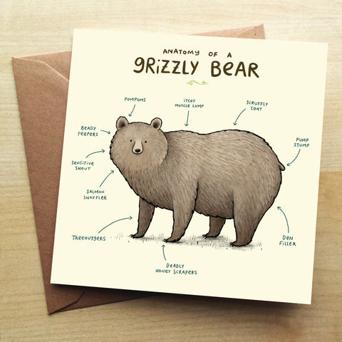 Anatomy Of A Grizzly Bear SC29G Greetings Card by Sophie Corrigan