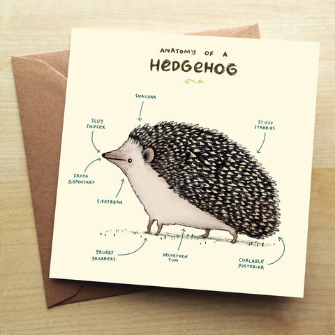 Anatomy Of A Hedgehog SC04G Greetings Card by Sophie Corrigan