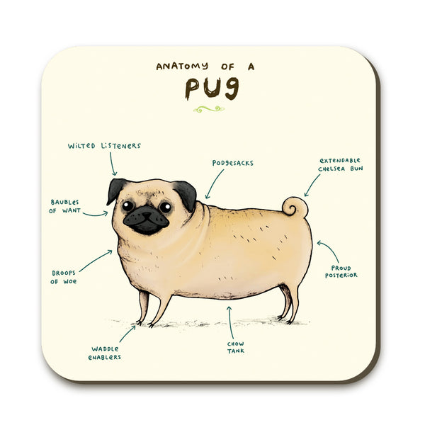 Anatomy of a Pug SC05C
