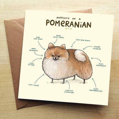 Anatomy Of A Pomeranian SC33G Greetings Card by Sophie Corrigan