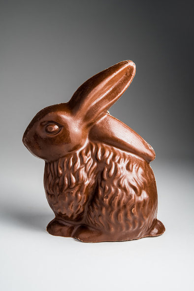 Large Floppy Eared Chocolate Bunny