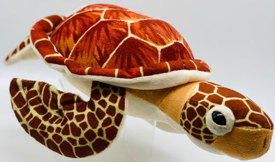 CK Mini Loggerhead Turtle