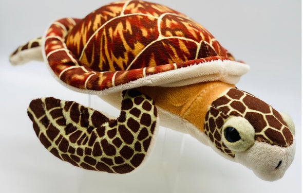 CK Mini Hawksbill Sea Turtle