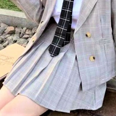 Checked Pleated A-Line Skirt