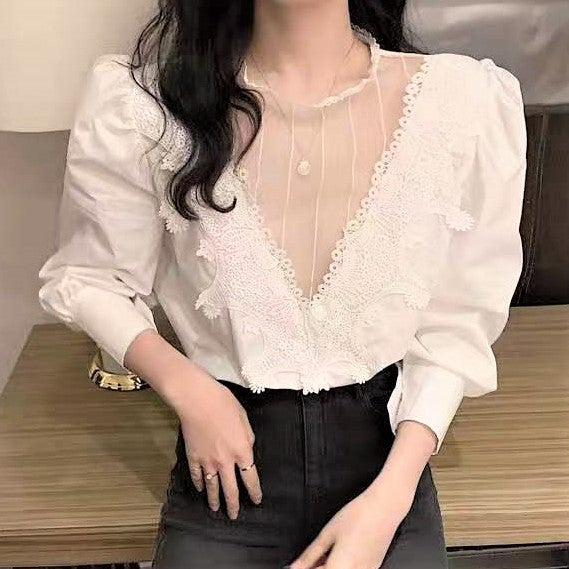 Sheer Lace Floral Embroidered Extended Sleeve Blouse