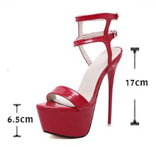 Load image into Gallery viewer, High Heel Platform Stripper Shoes - Size 6.5