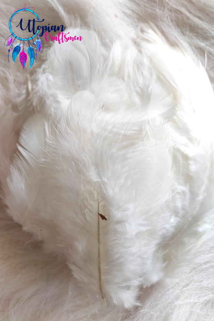 White Chicken Feathers For Crafts (Approx 100 pieces per packet) - Utopian Craftsmen