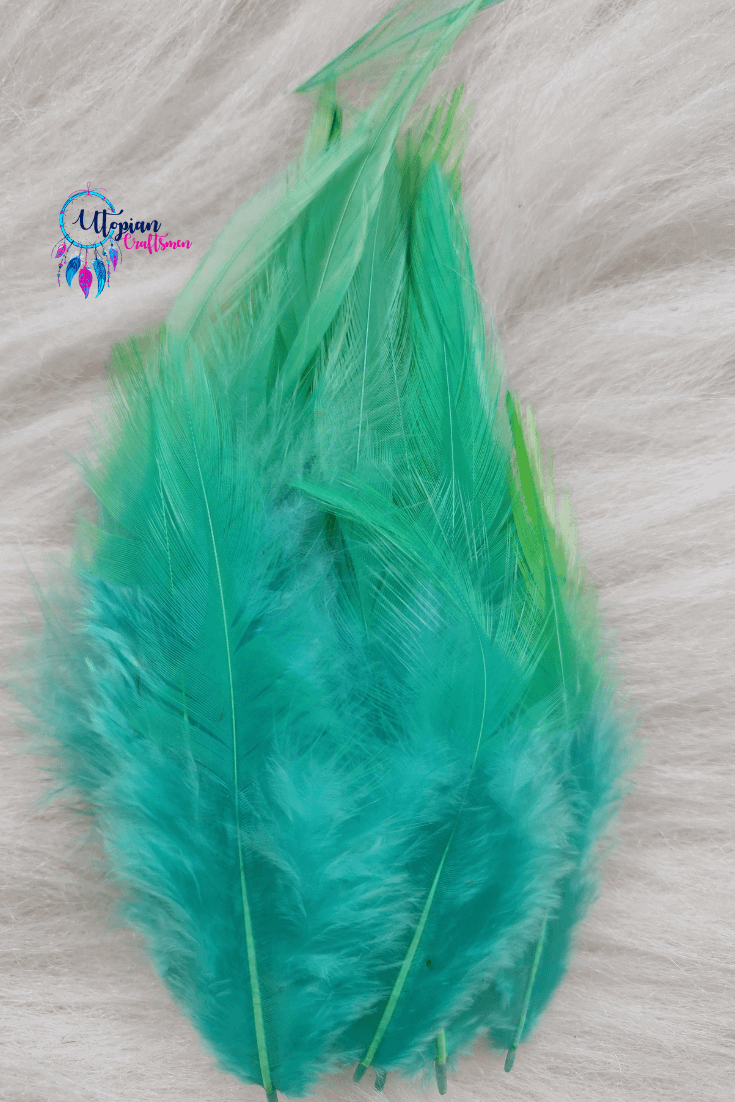 100 pcs Turquoise Colour Long Pointed Chicken Feathers - Utopian Craftsmen