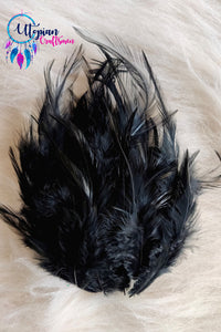 100 pcs Black Colour Long Pointed Chicken Feathers by Utopian Craftsmen - Utopian Craftsmen
