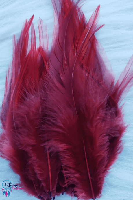 Buy Shade of Maroon Long Pointed Feathers online at affordable prices | Utopian Craftsmen