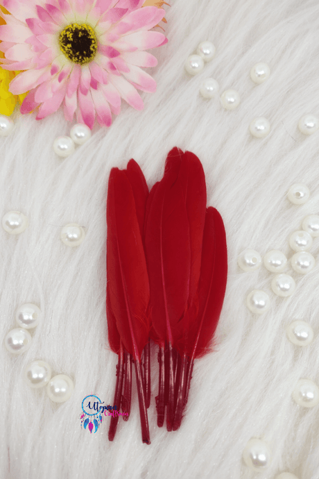 Buy online Red Colour Small Goose Feathers for Dream catchers | Utopian Craftsmen
