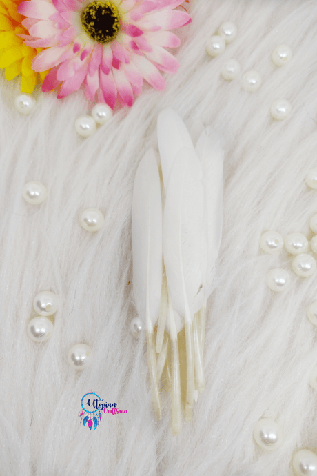 Buy online White Colour Small Goose Feathers for Dream catchers | Utopian Craftsmen