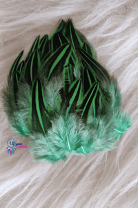 Buy Light Green Dual Colour Feathers for Dreamcatchers online | Utopian Craftsmen