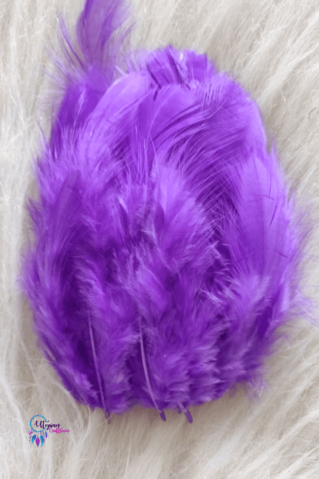 100 pcs Shade of Purple Colour Chicken Feathers by Utopian Craftsmen - Utopian Craftsmen