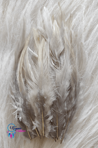 100 pcs Grey Colour Long Pointed Chicken Feathers - Utopian Craftsmen