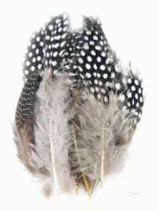 100 pcs Dotted Grey Colour Chicken Feathers by Utopian Craftsmen