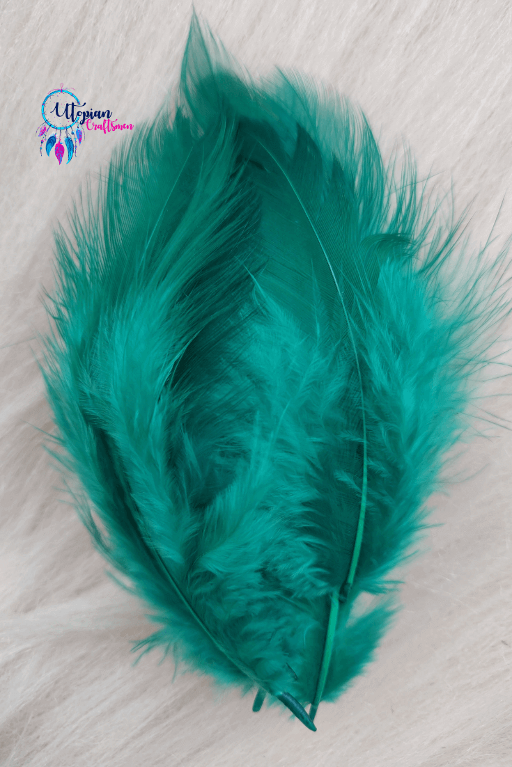 100 pcs Teal Green Colour Chicken Feathers by Utopian Craftsmen - Utopian Craftsmen