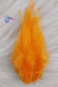 100 pcs Light Orange Colour Long Pointed Chicken Feathers - Utopian Craftsmen