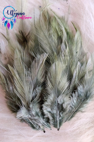 Sage Green Long Feathers For Crafts (100 pieces per packet)