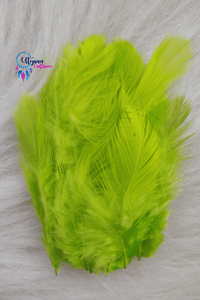 Fluorescent Colour Chicken Feathers For Crafts (Approx 100 pieces per packet) - Utopian Craftsmen