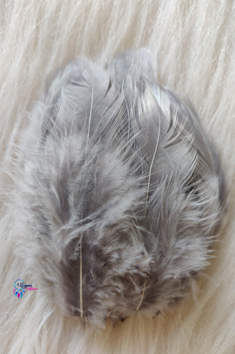 Grey Colour Chicken Feathers For Crafts (Approx 100 pieces per packet) - Utopian Craftsmen