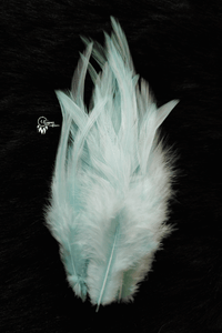 Light Mint Colour Long Pointed Chicken Feathers for Dreamcatchers