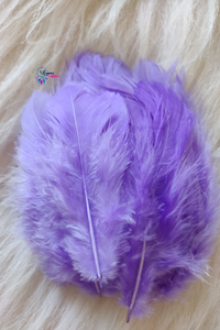 Light Purple Colour Chicken Feathers For Crafts (Approx 100 pieces per packet) - Utopian Craftsmen