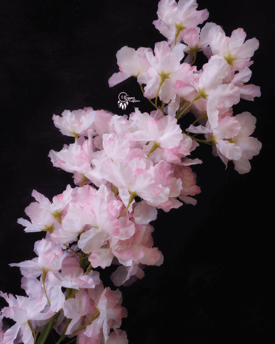 Pink and White Colour Cherry Blossom Artificial Flowers online for Crafts, Home Decor and Wedding Decor