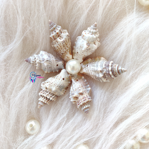 Sea Shells by Utopian Craftsmen - 21 Grams (Approx 12-15 Pieces) - Utopian Craftsmen