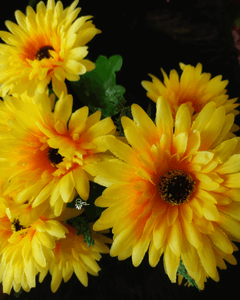 Yellow Colour Gerbera Aritificial Flowers online for Crafts, Home Decor and Wedding Decor